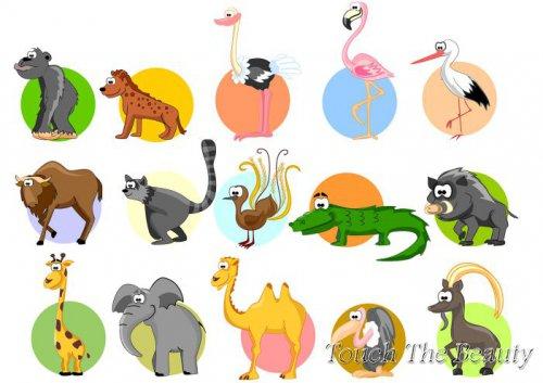 №286 Животные