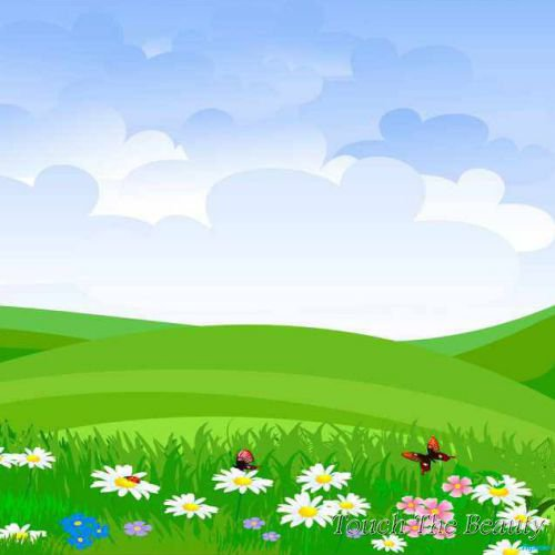 фон для развивающей книжки Поняна в цветах